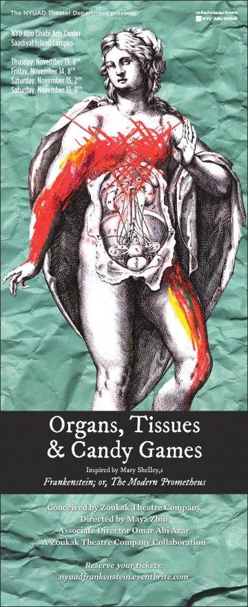 Organs Tissues and Candy Games